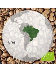 Café Bio Brésilien Camocim