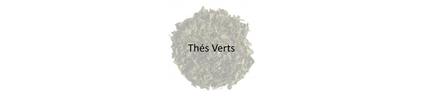 Organic Green Tea Wholesale - Organic Green Tea Supplier - Obvious Tea